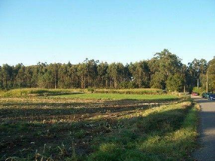 Leira das ermidas, lugar en el que se levantó la ermita de santa locaia que dio nombre al lugar. arteixo (coruña).