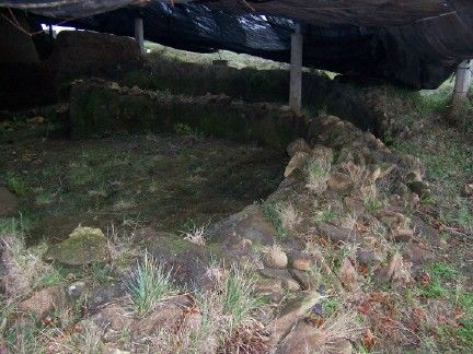 Dolmen de dombate